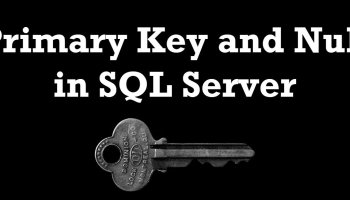 SQL SERVER - Interesting Interview Questions - Part 2 - Puzzle PrimaryKey