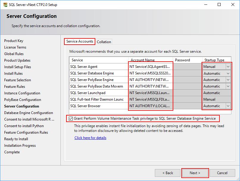 SQL Server 2019 Setup - Server Configuration - Service Accounts