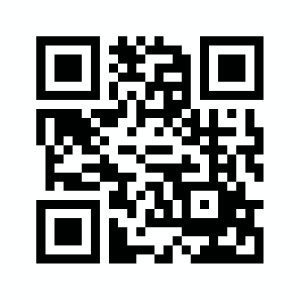 qrcode 3189944