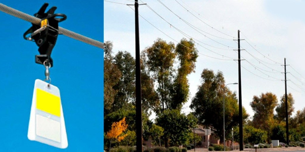 bird flight diverters on power lines