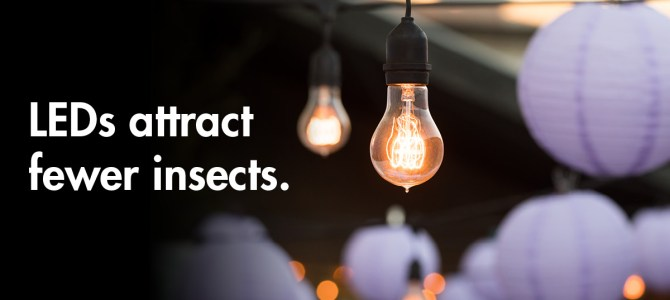 5 unexpected benefits of LED lightbulbs