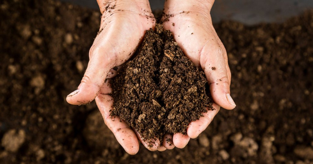 compost-wood-chip-gro-well