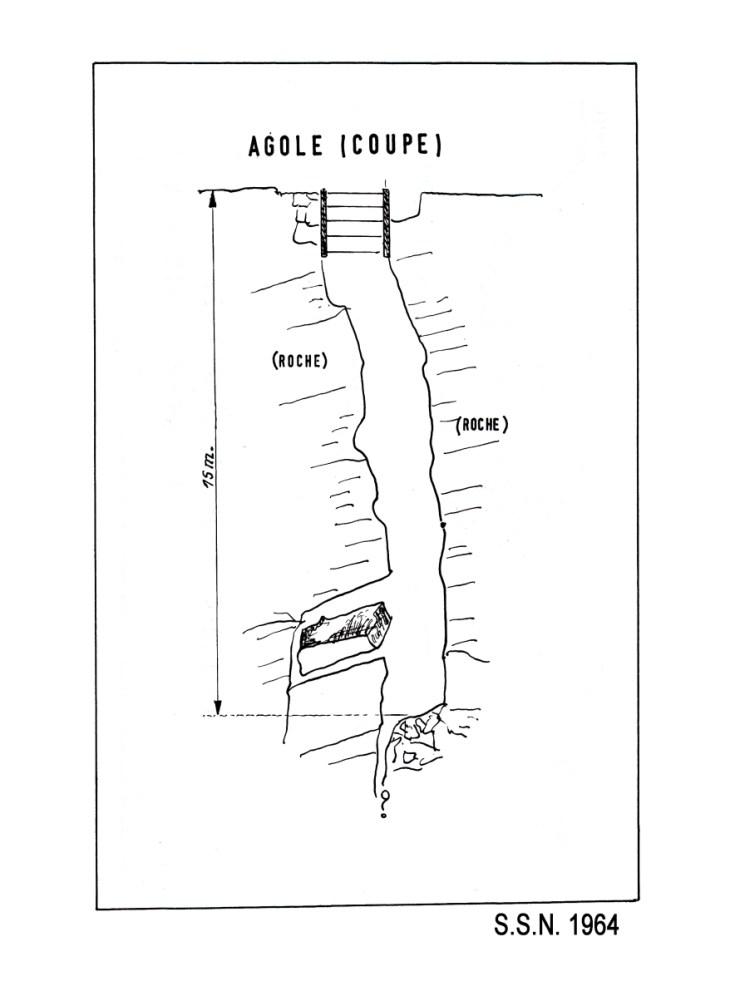 Agole1964z