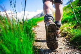 Männerwandern 2019 – Traumschleife Bärenbachpfad, Preußensteig Teilstrecke und Weiselberg Gipfeltour….