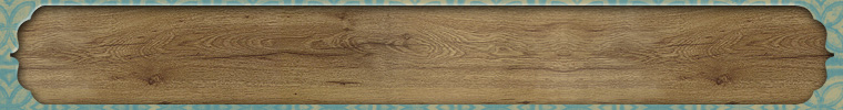 ETSY_BANNER_BOOKPLATE_GREY