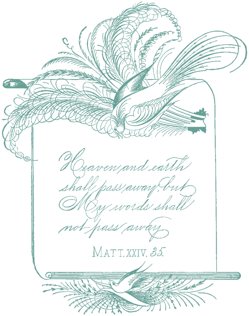 SSFS_Spencerian_Calligraphy_1 (3)