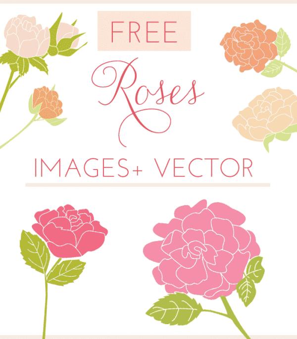 free roses clip art, clipart, free vector, free vectors, rose image, rose clip art,