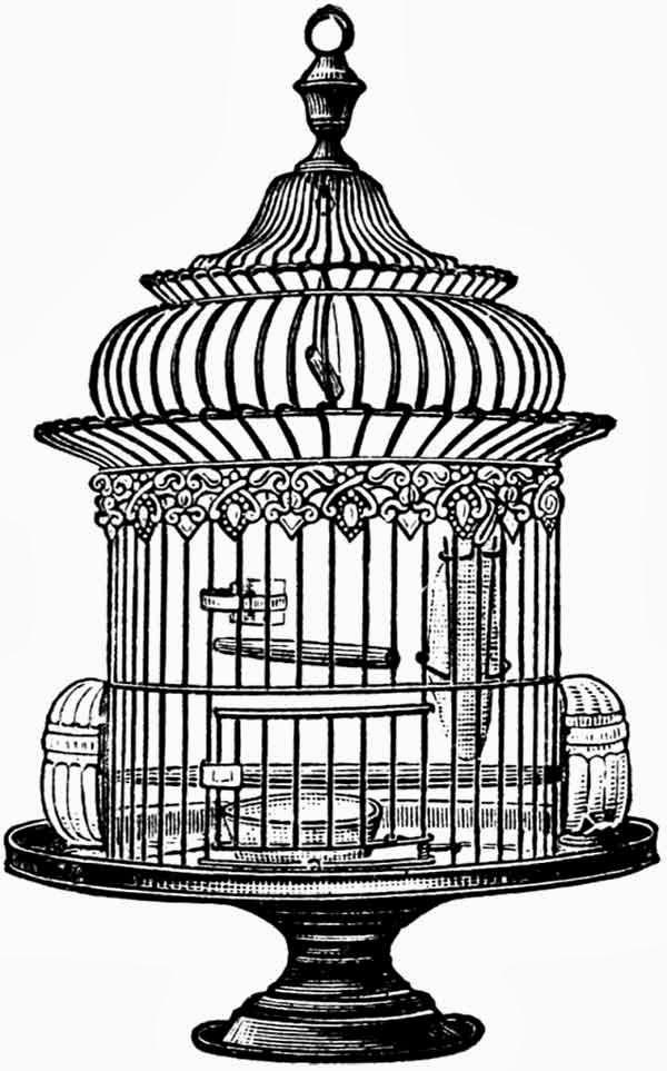 free vintage bird cage clip art, clip art, vintage, bird cage
