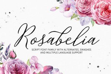 0014_rosabelia_calligraphy_font_script