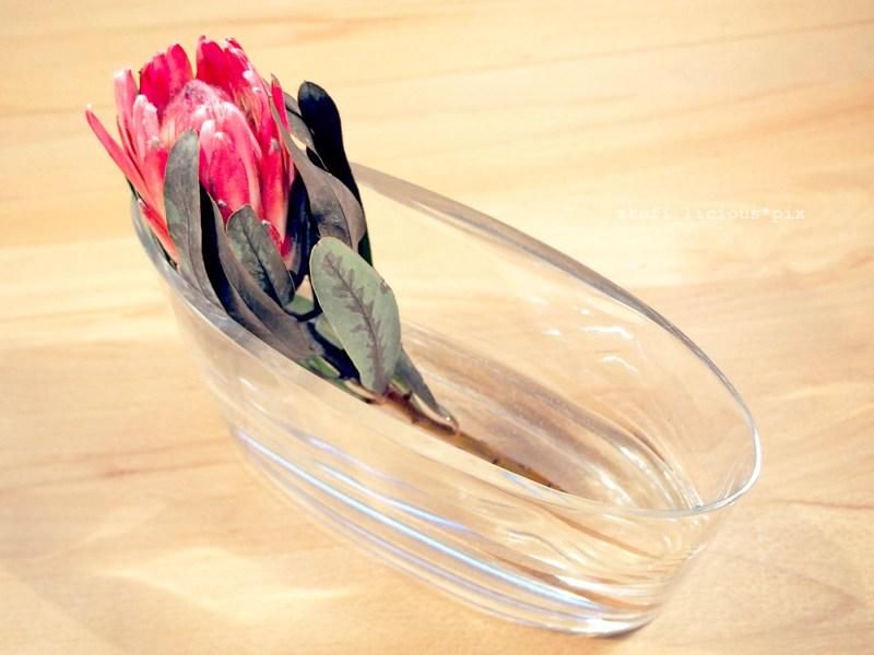 protea in der vase