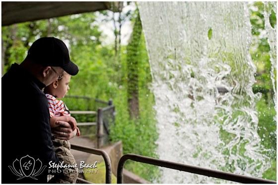 Toronto Zoo Waterfall