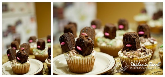 Dugtrio Cupcakes Stephanie Beach Photography