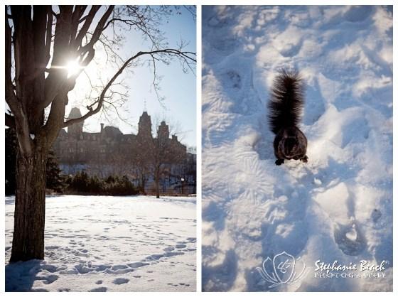 Ottawa Winter Stephanie Beach Photography