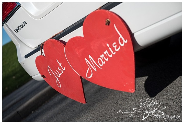 Andrew Haydon Park & Delta Hotel Wedding Photography Stephanie Beach Photography-28