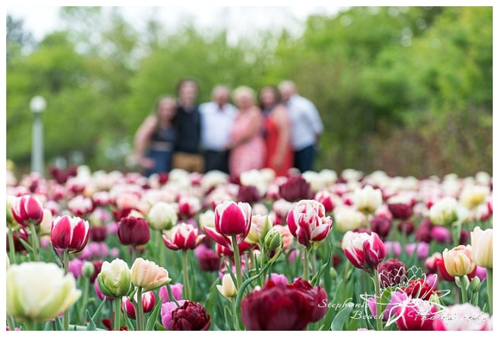 Ottawa Tulip Festival Family Session Stephanie Beach Photography 05