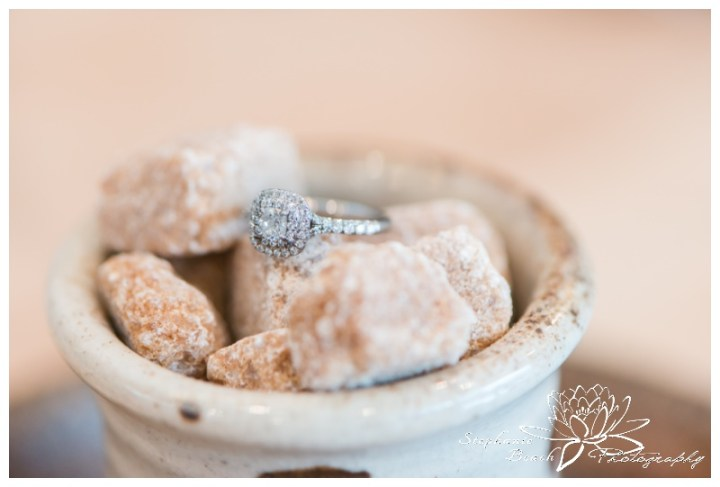 Indoor-Engagement-Session-Chelsea-Quebec-Stephanie-Beach-Photography-winter-ring