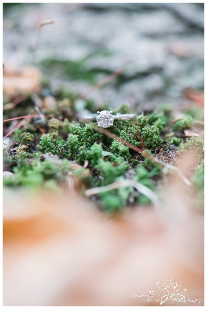 Jack-Pine-Trail-Engagement-Session-Stephanie-Beach-Photography-ring-macro-fall