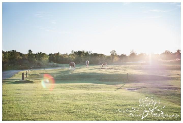 Stanleys-Olde-Maple-Lane-Farm-Wedding-Stephanie-Beach-Photography-sunset-sunflare