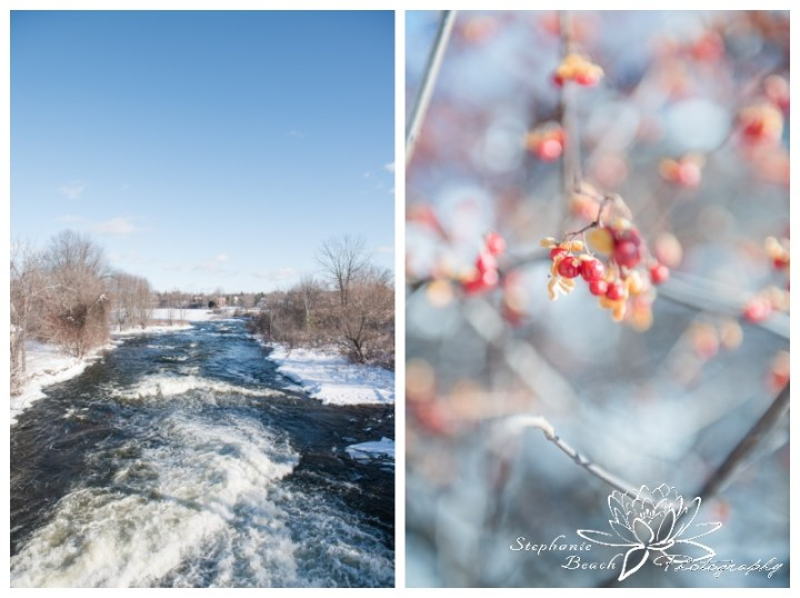 Merrickville-Winter-Engagement-Session-Stephanie-Beach-Photography-river-landscape