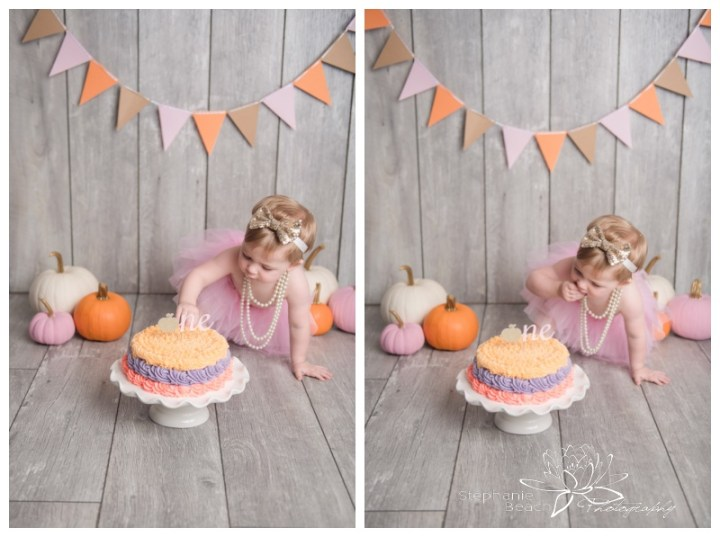 Ottawa-Cake-Smash-Studio-First-Year-Portraits-Stephanie-Beach-Photography