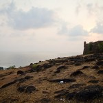 Sariska – of Forts and Tigers