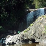Eravikulam National Park – A must see spot in Munnar