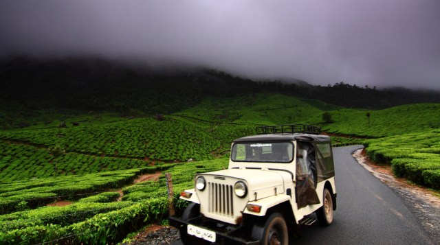 The beautiful roads around Munnar, the Mountains and the Mist!