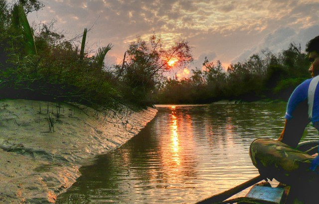 sundarbans national park west bengal images