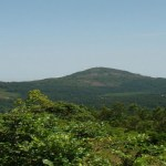 Things to do when in Yercaud