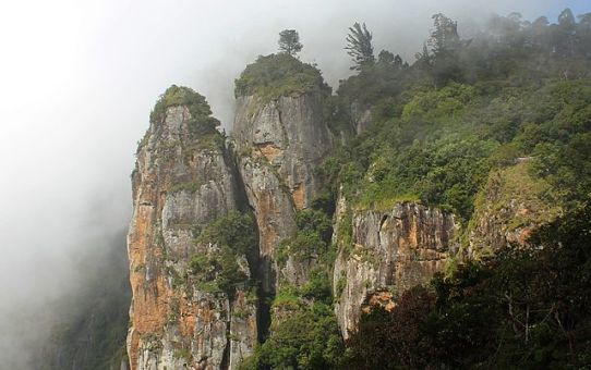 Mind-blowing facts about Kodaikanal!