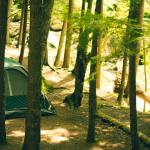 Best Camping Destinations near Mumbai