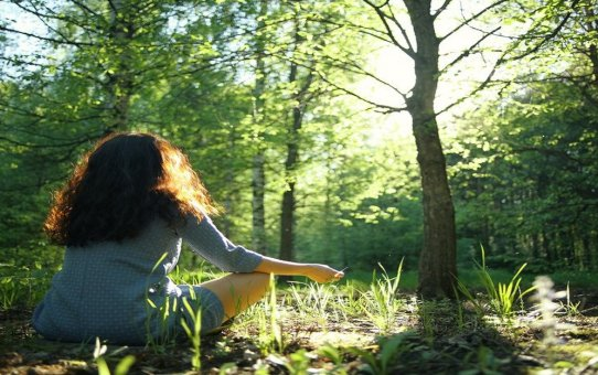 Forest Bathing - the latest travel experience you didn't know about