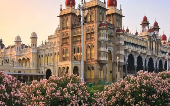 Top 7 interesting things to do in Mysore