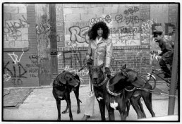 Photo: Lady With Big Dogs