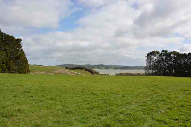 Scenic Atiu Creek Regional Park situated on the Kaipara Harbour in northwest Auckland