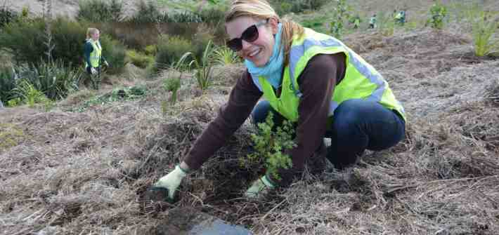 A member of the Stray team getting her hands dirty.