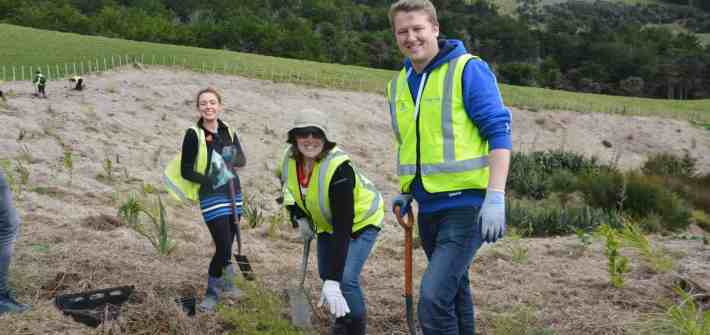 Members of the Stray team getting their hands dirty planting trees