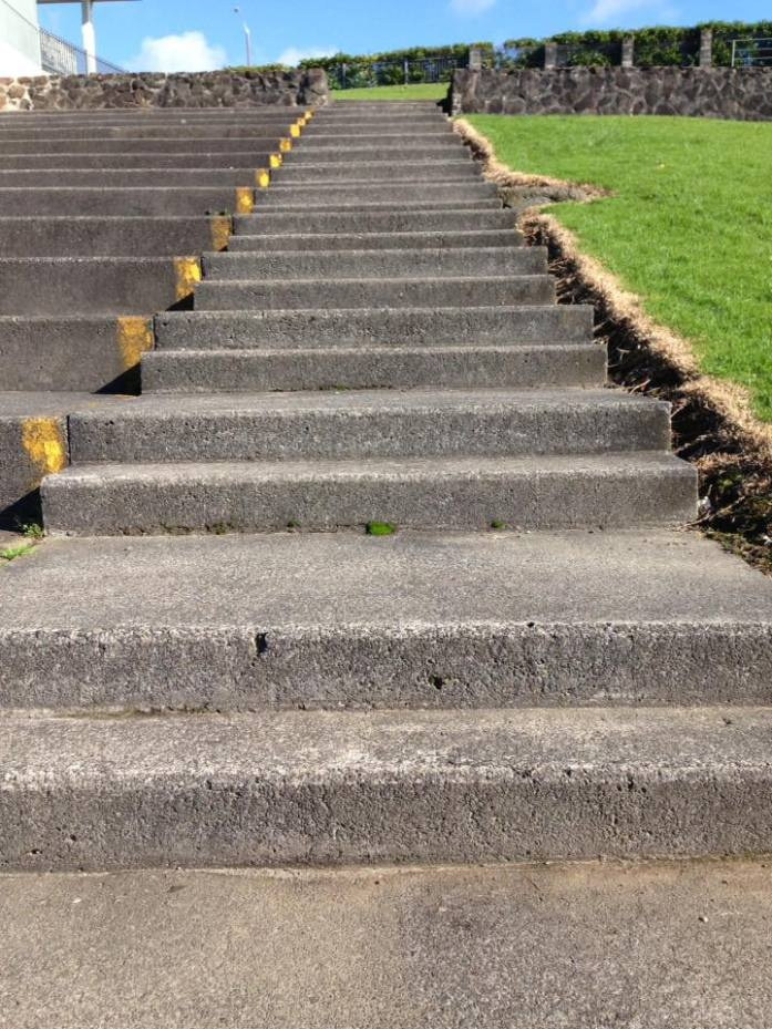 Stair training for Stray's Step Up Challenge