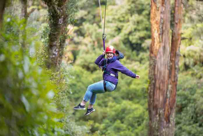 Ziplining with Rotorua Canopy Tours - Stray New Zealand
