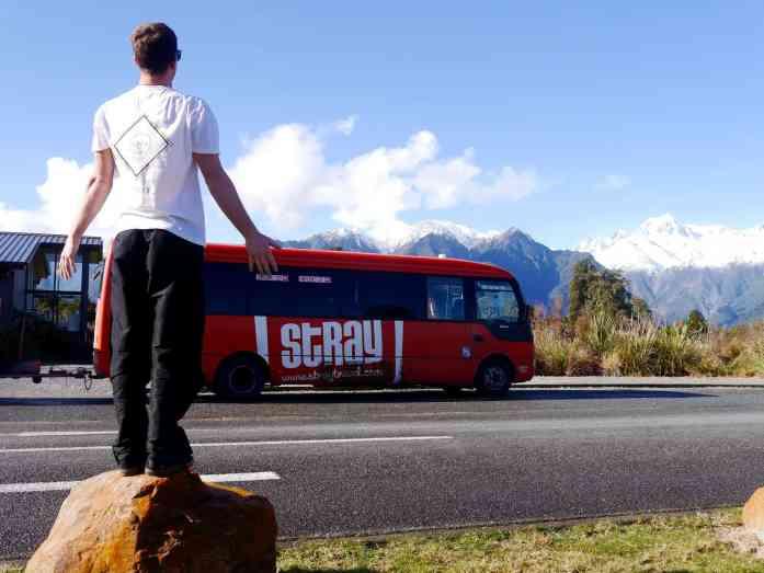 Ellie Crook - Stray Days with Stray New Zealand