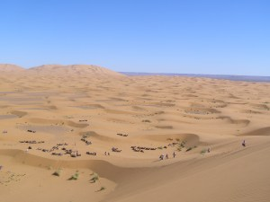view-from-the-top-of-the-great-dune-thats-algeria-in-the-distance