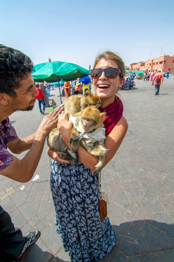 """Jemaa el-Fnaa"""" Here in Marrakech at the Jemaa el-Fnaa Square we had the opportunity to play with some of the world's cutest animals - monkeys!"""