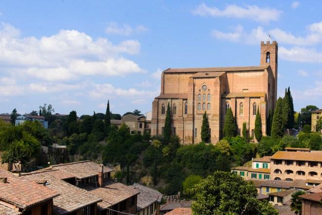 Sienna,Italy,King-Photo3