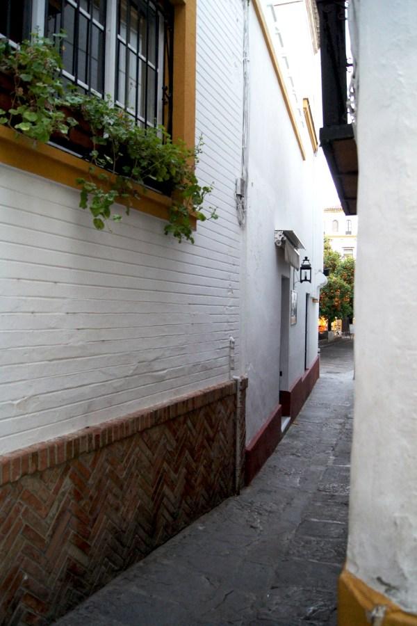 Calle en Barrio Santa Cruz