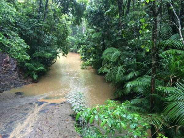 Here is a glimpse of the Rainforestation Nature Park from the safe and secure WWII Army Duck in Cairns, QLD, Australia.