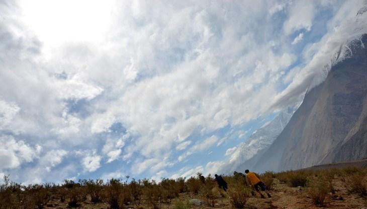 Mountainside, Pisco Elqui