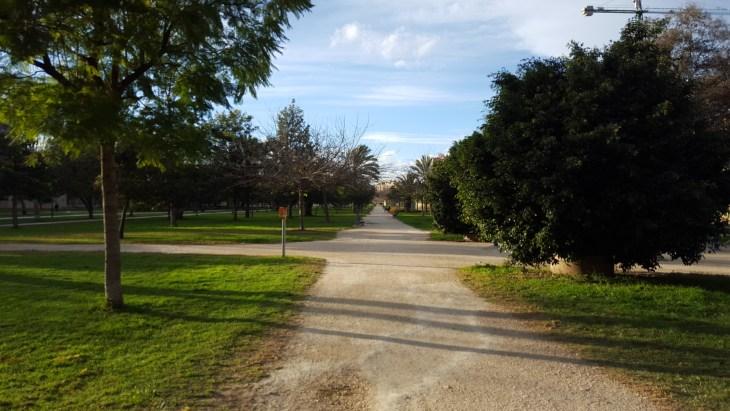 Walking Path-Valencia-Spain-Krysl-Photo 1