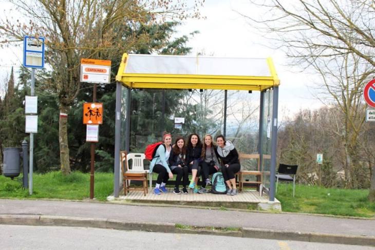 Bus Stop, Pratolino, Italy, Cranford, Photo 3