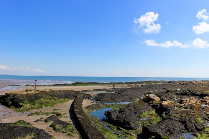 Picture 2 West Sands beach st andrews