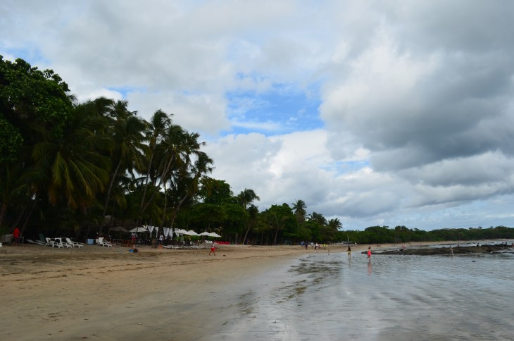 Beach, Tamarindo, Costa Rica, Joyce Photo 2